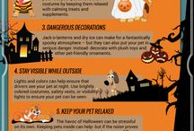 Fall Season Pet Safety