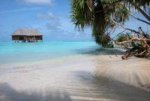Piękne Malediwy / Najpiękniejsze miejsce na wakacje.