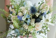 ROSIE'S POSIE'S / Stunning flowers to inspire the senses