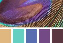 Colors / by Stephanie Burpoe
