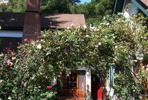 The Rose House / A country garden