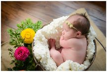 Silver Orchid Newborn Photography