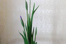 Ikebana / by My Ngoc