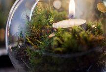 candele e lanterne / Candele e lanterne