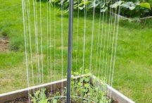 pomysły do ogrodu
