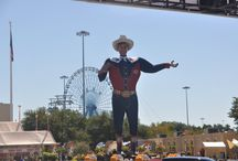 """DALLAS, TEXAS aka Big """"D"""" / 9th largest U.S. city located in north Texas, population 1, 241,162, home of the Great State Fair of Texas, Cotton Bowl, and #1 destination for visitors to Texas."""