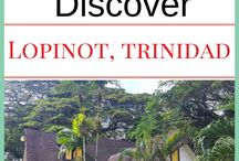 Tours & Sightseeing in Trinidad and Tobago