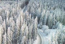 Winter & Christmas