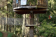 Tree Houses / by 1Kindesign
