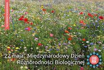 Dzień Różnorodności Biologicznej