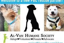 PBC's Rescue Partner Network / Project Blue Collar's Rescue Partner Network program serves as a fundraising and outreach opportunity for our shelter partners. The Rescue Partner Network program not only generates revenue—it creates advocates in your community—and helps to build the movement on a global scale.