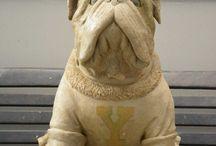 Yale University Custom Bulldog Mascot on Bench