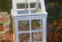 Mini Greenhouses/Terrariums