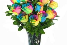 New Year / The freshest flowers for the freshest year!