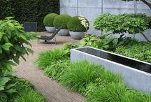 Room - Gardens