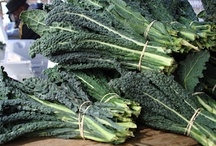 Kale! / Kale recipes of all shapes and sizes / by Erika Kerekes