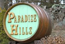 Paradise Hills Vineyard / Paradise Hills Vineyard located in Wallingford, CT / by Connecticut Food & Wine
