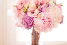 flowers / by Mackenzie Walker