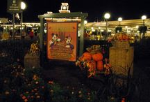 Not So Scary Halloween / Halloween can be a scary time especially for parents trying to keep their children safe.   Disney and others have ideas on how to enjoy the season without the fear.