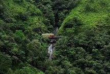 Vagamon Tour Packages / Dreamholidays offers best Thekkady tour packages which covers top attractive places to visit in Vagamon