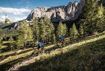 Bici News / Informazioni e curiosità sul mondo della bicicletta e del ciclismo