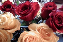 Flowers!! / by Patricia Kirkland