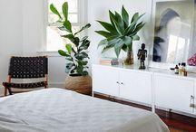 Interior: Master Bedroom