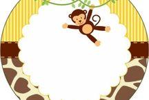 sala monos
