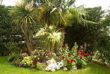inspiración jardin