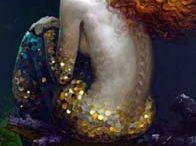 Fantastic Mermaids  / Drawings, paintings of beautiful Mermaids.
