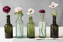 Jars & Bottles / by Jill floralearth