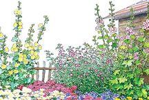 Blumenbeete anlegen