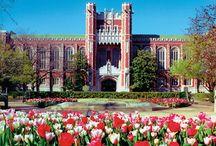 University of Oklahoma / The University of Oklahoma campus, sports and memorabilia / by Susan Monroe