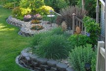 Yard ideas / by Kristin Strand