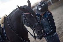 Amazing fashion and horses