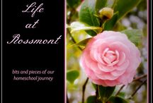 Life at Rossmont Blog Favorites / Favorite and most frequently read posts from my blog, Life at Rossmont.