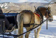 Romance in Mt. Washington Valley