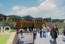 green school / Edifici scolastici sostenibili