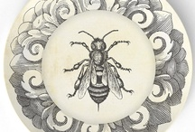 Bees Knee's / by Valorie Phillips-Keeton