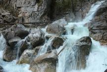 Neuschwanstein i okolice