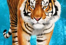 Tigrisek