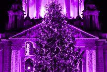 christmas / by Lori Calvin Peterson
