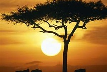 Out Of Africa  / I´ve been There <3