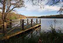 Somerleyton Retreat / Our beautiful secluded lakefront lodge. Fantastic views over our lake and completely private. Usually referred to as our honeymoon lodge, if you deserve a treat, this is for you.