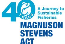 #MSA40 / We're celebrating 40 years of the Magnuson-Stevens Act! If you're wondering what that is, well it's the primary law governing marine fisheries management in U.S. federal waters. Join along with #MSA40!