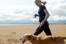 Fit & Healthy / All things active and healthy for humans & their pets!