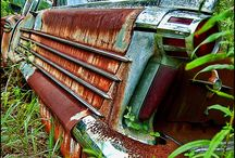 Rusted / by Rebecca Price