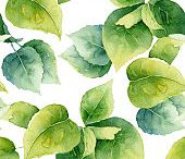 hojas sueltas