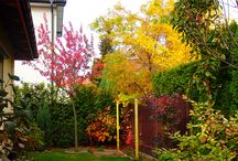OGRODY / Projektowanie i realizacja ogrodów
