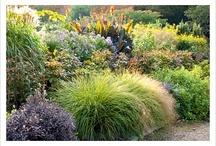 Gartenidee